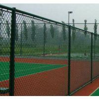 供青海网围栏和玉树球场网围栏批发