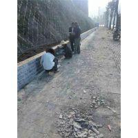 主动边坡防护网厂家直营-主动边坡防护网厂家-俊川科技(查看)