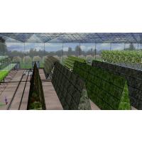 湖北随州 一体智能组合玻璃温室大棚配件安装行业领先厂家