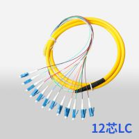 LC/UPC单模电信级12芯束状尾纤集成尾纤