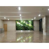 杭州枫桓定制植物墙