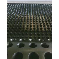 排水板性能 滤水板施工方法 车库排水板型号 找泰安融创厂家定做规格型号