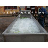 叶类蔬菜多功能果蔬清洗机,耗水量低