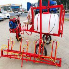 果林泵生产厂家 润丰 梨树高喷用喷雾器 四轮带喷洒农药打药机