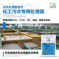 鸿淳环保化业污水处理菌种电镀废水造纸黑液高效处理降解cod氨氮