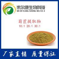 菊苣提取物 10:规格 菊苣粉 精选优质植物萃取原料 量大从优