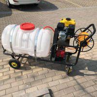 供应绿化杀虫打药车 物业高效杀虫机 除四害消毒喷雾机