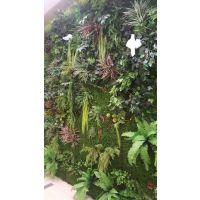 仿真植物批发|西安仿真植物批发仿真树市场|仿真树|仿真花|仿真植物墙