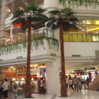 高档时尚住宅区仿真扇葵树棕榈树 热带雨林风格室内外装饰玻璃钢仿真树