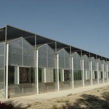 昆明连栋温室-青州建发温室建设-连栋温室优点
