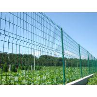 东联网栏厂现做现销双边丝护栏网、市政护栏网、山地防护网