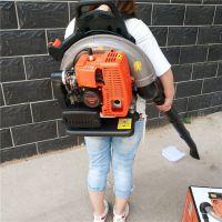 供应轻便手持吹风机 低噪音汽油吹风机 背负式路面清扫机