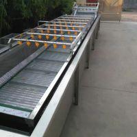 厂家直销全自动网带式蔬菜水果清洗机 诸城神州机械清洗设备