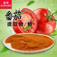 番茄粉 森弗厂家森弗 1kg含运费 冷冻干燥番茄粉
