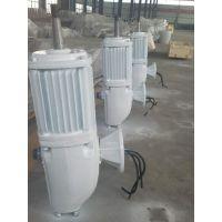 液压塔架风力发电机,50KW三相交流永磁风力发电机, 四川成都晟成