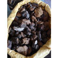 进口白桦茸功效与作用 桦褐孔菌产地批发价格哪里购买 多少钱一公斤
