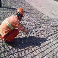 高速公路专用土工格栅 安平公路防裂网厂家 矿用土工格栅