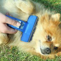 宠物狗狗一键除毛梳脱毛刷去死毛预防打结梳子清洁按摩梳