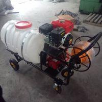 四轮高压自动喷药机 科圣 农用汽油喷雾器打药机 手推式高压打药车