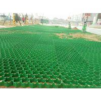 山东HDPE塑料植草格生产厂家 绿化护坡草坪砖 停车场机场小区绿化带专用