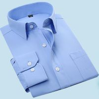 纯蓝色衬衣男长袖寸衫青年商务职业装西装打底衫工作服加肥加大码