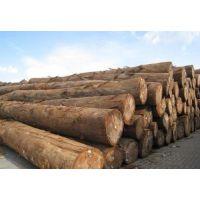 青岛进口木材报关代理注意哪些风险