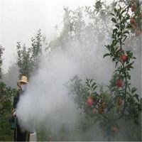 金佳果园手提式弥雾机 保药效的果园烟雾弥雾机 稻田杀虫打药机厂家