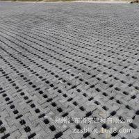 河道植草砖 河道连锁砖联锁护坡砖 自嵌挡土护坡砌块 舒布洛克砖