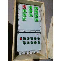 四川BXD51-系列防爆配电箱(动力检修) 防爆检修箱 防爆动力配电箱厂家直销