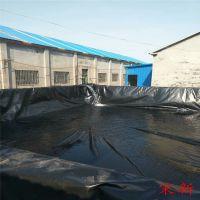 1.2厚沼气池土工膜多少钱一平米