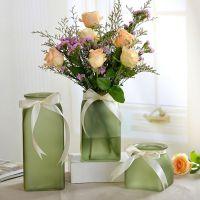 常青藤玻璃花瓶小清新花瓶彩色磨砂简约客厅摆件办公桌水培花瓶子