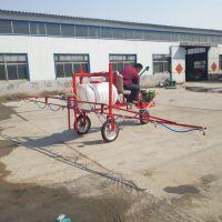 工厂直销农用三轮车自走式喷雾机玉米灭虫打药机 山东鲁宏