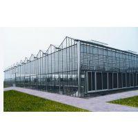 ZH8430智能玻璃连栋温室