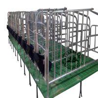 养猪设备厂家冯平供应热镀锌母猪定位栏 带底复合定位栏