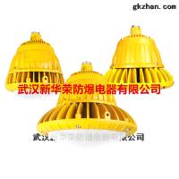 BLD190隔爆型LED灯20W,30W,厂家直销各种防爆灯具