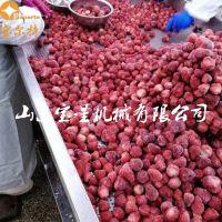 草莓冻干机 全自动草莓低温真空冻干设备 果蔬蒸发水分机器