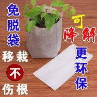 如何正确使用无纺布育苗袋
