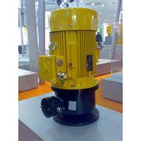 Coel Motori-Coel Motori减速电机
