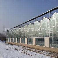 厂家供应自动化温室大棚 智能玻璃大棚 生态餐厅玻璃连栋