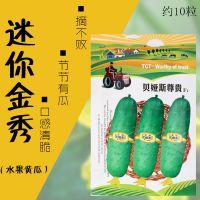 迷你金秀水果黄瓜种子批发小黄瓜地栽阳台盆栽菜籽四季播蔬菜种子