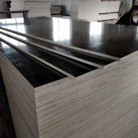 国际标准建筑覆膜板多层板德州星冠模板制造厂家