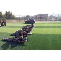 室外军训模拟射击打靶训练系统 军警模拟打靶设备 机关射击设备