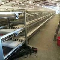 专业生产 批发肉鸡笼 规格热镀锌防腐蚀肉鸡 欢迎来电洽谈