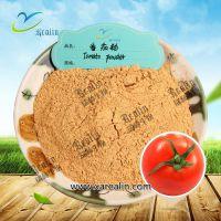 番茄粉 99.9% 水溶番茄粉  水果粉 蔬菜粉 喷雾干燥 现货供应