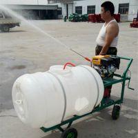 圣鲁农用高压喷雾器 手推农用打药机 四冲程喷雾机