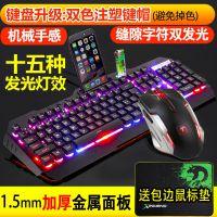 新盟 曼巴狂蛇机械手感键盘鼠标套装游戏笔记本台式电脑有线键鼠