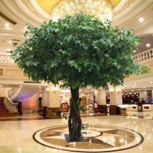 榕树大型大树假树客厅装饰专业定做