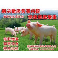 肉猪吃什么能够快长增肥?啥牌子的添加剂能催肥猪?