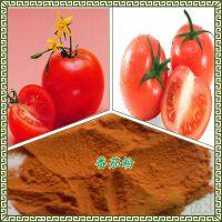 番茄粉 水溶性好 无添加 西红柿粉 品质保证 陕西米尔康现货包邮