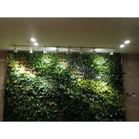 杭州枫桓创新植物墙